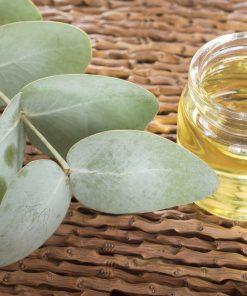 Eukalyptusoel-naroma.ch